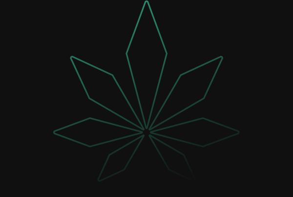 Cannabis Advisory Asia_Cannabis Service